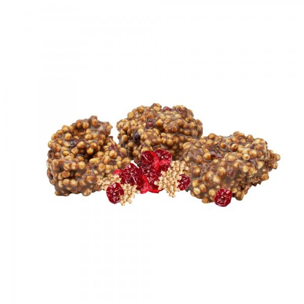 Bio Quinoa Cranberry Pops von Gartmann